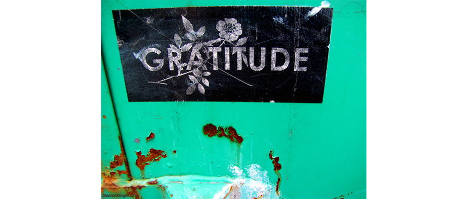 Gratitude and Rust, by Shannon Kringen, via Flickr.com. Used under Creative Commons 2.0 license.